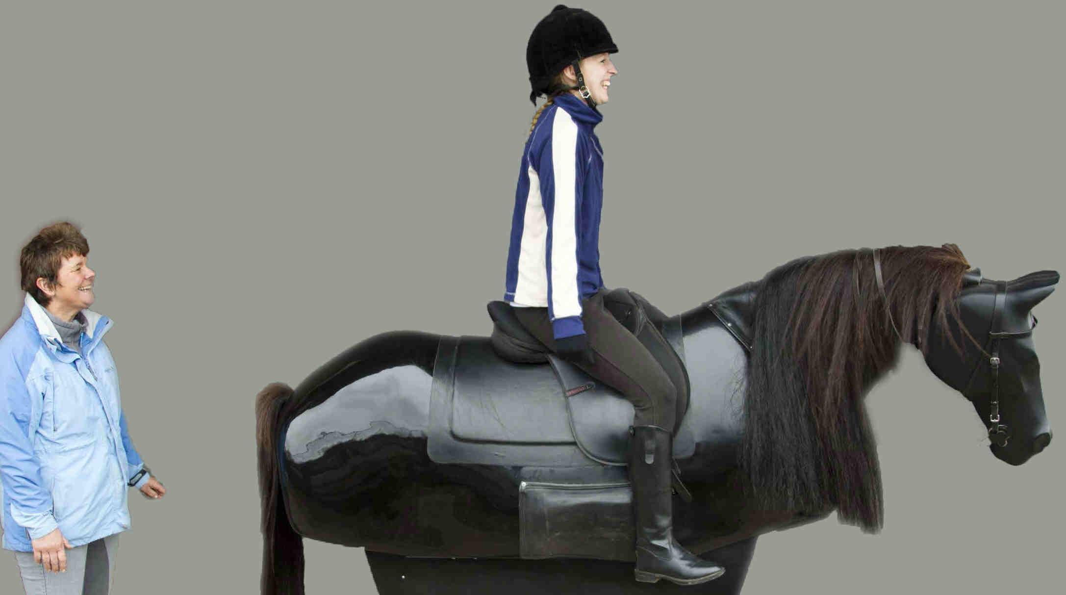 Racehorse Simulator For Sale